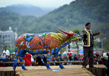 In this photo taken on Saturday, Dec. 10, 2011, a villager shows his painted ox on a stage during a bull painting contest held in Jiangcheng county in southwest China's Yunnan province. The local tradition of bull painting originated from a Hani minority group's tale, saying painting a bull is to scare away tigers in the village. (AP Photo) CHINA OUT