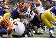 Cincinnati Bengals running back Bernard Scott dives into the end zone for a 1-yard touchdown run during the third quarter of an NFL football game against the St. Louis Rams on Sunday, Dec. 18, 2011, in St. Louis. (AP Photo/Seth Perlman)