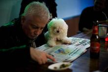 A man reads a newspaper with his dog in a bar in Barcelona, Spain, Sunday, Dec 25, 2011. (AP Photo/Emiliio Morenatti)