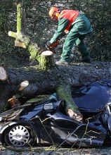 A firefighter cuts a tree after if fell on a car in Ghent, 50 km (31 miles) west of Brussels, Belgium, Thursday Jan. 5, 2012. Gale force winds caused disruption in Belgium, France, Britain and the Netherlands. (AP Photo/Yves Logghe)