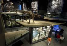 Steve Griffin     The Salt Lake Tribune   The new Natural History Museum of Utah of Utah in Salt Lake City will be open free of admission Jan. 9, the first of four