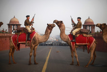 Indian Border Security Force Officers sit atop camels during preparations for the upcoming Beating Retreat ceremony on Raisina Hill near the Presidential Palace in New Delhi, India, Thursday, Jan. 19, 2012. The ceremony is held annually on January 29th. (AP Photo/Kevin Frayer)