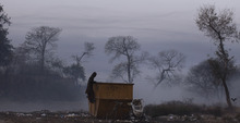 A Pakistani man looks inside a garbage container while collecting items he hopes to sell to a recycling factory, on a foggy and cold morning in Islamabad, Pakistan, Friday, Jan. 20, 2012. (AP Photo/Muhammed Muheisen)