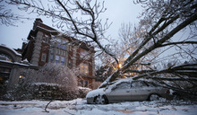 A tree rests on a car, Thursday, Jan. 19, 2012, in front of an apartment building in Tacoma, Wash. On the heels of heavy snow that fell Wednesday, the Western Washington region was hit with an ice storm Thursday that coated trees and vehicles with a heavy coat of ice. (AP Photo/Ted S. Warren)