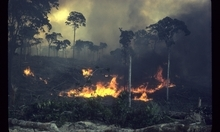 Fires of the Amazon in a scene from