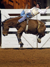 Zach Dishmann maintains balance while flipped in the air by Bay Man during the bareback bronc competition at the Forth Worth Stock Show Rodeo, Friday, Jan. 27, 2012, in Forth Worth, Texas. Dishmann scored an 80 on the ride. (AP Photo/The Fort Worth Star-Telegram, Paul Moseley)  MAGS OUT