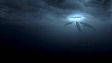 In this image released by Universal Pictures, a scene is shown from