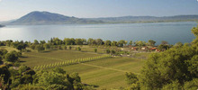 Learn about the biodynamic wine created at the Ceago Vineyard in Clear Lake, Ca. Courtesy image