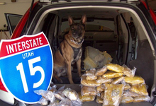 St. George police, aided by the drug-sniffing dog,