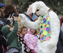 In an April 23, 2011 photo, he Easter Bunny gives a high-five to one of the participants in the Old Colorado City Easter Egg Hunt in Colorado Springs Colo. Organizers have canceled this year's event, complaining of parental behavior. They say that last year aggressive parents swarmed into a tiny Colorado Springs park last year, determined that their kids get an egg.  (AP Photo/The Colorado Springs Gazette, Jerilee Bennett)