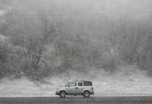 Steve Griffin   The Salt Lake Tribune Snow falls in Emigration Canyon on Monday morning.