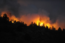 Fires top out trees as the blaze just about comes over the ridge near Reynolds Ranch Monday, March 26, 2012 in Conifer, Colo.A fast-moving wildfire destroyed at least five houses in the mountains west of Denver on Monday.  (AP Photo/John Leyba,The Denver Post) MANDATORY CREDIT  MAGS OUT