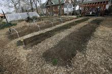 Scott Sommerdorf     The Salt Lake Tribune              Rows of neatly laid out plantings at Wasatch Communty Garden, Saturday, March 24, 2012. Having a successful backyard garden requires a plan. Gardeners must map out what plants they want to grow and how much space they need before they put seedlings to soil.