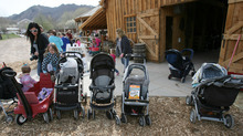 Steve Griffin | The Salt Lake Tribune  Strollers are lined up outside the baby animal barn at This Is the Place Heritage Park in Salt Lake City on Thursday, April 5, 2012. The baby animal season kicked off Thursday and will run through Saturday at the park.