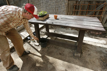 Scott Sommerdorf  |  The Salt Lake Tribune              Salt Lake City resident Chris Gleason with a backyard potting table he built at his Salt Lake City home.