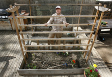 Scott Sommerdorf  |  The Salt Lake Tribune              Salt Lake City resident Chris Gleason poses on March 25, 2012, next to the tomato trellis he built at his Salt Lake City home.  Gleason's the author of several how-to books, including