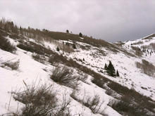 Bruce Tremper included this shot of a ridge at 9,500 feet in one of his last avalanche advisories of the season to illustrate his concern about the lack of snow. Soon after, he wrote: