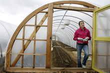 Rick Egan  | The Salt Lake Tribune   La Nay Ferme farm manger, Barbara Fuller stands at the entrance of one of the tunnels of the new Provo community supported agriculture program. Some local CSA farms are adding greenhouses or