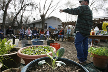 Scott Sommerdorf  |  The Salt Lake Tribune              Urban homesteader  Jonathan Krausert teaches a class on how to grow vegetables and flowers in colorful containers at Wasatch Community Garden last month.