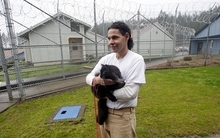 Inmates Joseph Contreras holds Princess Natalie at Larch Correctional Facility Friday, April 20, 2012, in Yacolt, Wash.  The Cuddly Catz program at the Larch Correctional Facility, a minimum-security prison is several months old, but inmates say they've already noticed a difference in the cats and themselves. The program began in cooperation with a local animal shelter. It has grown to include two cats and four inmates, and the prison plans to add four more cats. (AP Photo/Rick Bowmer)