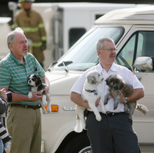 Steve Griffin/The Salt Lake Tribune   Keith Hales and Kim Brown, right, hold three dogs that escaped a house fire in Murray, Utah Thursday May 3, 2012. The dogs belonged to Brown's son and daughter-in-law who are living in the home that caught fire Thursday morning.  Brown's son suffered burns to his face and was taken to a nearby hospital. The other three people, a women and two children, escaped unharmed. According to Murray City fire authorities the dog on the right hid in a crib inside the home and survived the blaze. The other two dogs escaped outside during the blaze.