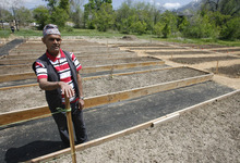 Rick Egan  | The Salt Lake Tribune   Narad Acharyiu, a refugee from Ahutan, looks over his garden plot, during the grand opening of the community garden in Holladay,  Friday, May 4, 2012.  The Mount Olympus Garden is a cooperative venture for Howard R. Driggs Elementary School, Olympus Junior High School, Salt Lake City, Holladay City, Salt Lake County, and New Roots of Utah in partnership with the International Rescue Committee.