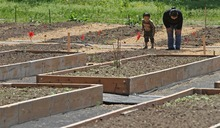Rick Egan  | The Salt Lake Tribune    Three Year-old Nei Sung, looks at their garden plot with his mother, Van Lal Ryuta Piang, at the grand opening of the community garden in Holladay, Friday, May 4, 2012.  Piang and her son are Burmese refugees. The Mount Olympus Garden is a cooperative venture for Howard R. Driggs Elementary School, Olympus Junior High School, Salt Lake City, Holladay City, Salt Lake County, and New Roots of Utah in partnership with the International Rescue Committee. Piang plans to plant Mustard, Cabbage, Onion, Peas and Spinach, and Tomatoes in their section of the garden.