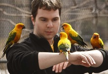 Leah Hogsten  |  The Salt Lake Tribune Aaron Bruderer, of Salt Lake City, gets an up-close encounter with sun conures during his Amazon Adventure at Tracy Aviary.