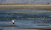 Leah Hogsten  |  Tribune file photo Jason Henrie, of Murray, walks on Silver Sands Beach of the Great Salt Lake in 2010. New federal environmental rule should help reduce mercury in the lake and other water bodies, according to researcher David Krabbenhoft.