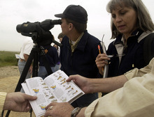 Tribune file photo  Beginning birders work with guides at Farmington Bay on the Great Salt Lake during a 2003 event.