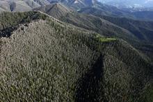 Rick Egan  | The Salt Lake Tribune   Gros Ventre are east of Jackson Hole, Wyoming, Monday, August 1, 2011.