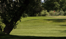 Francisco Kjolseth  |  The Salt Lake Tribune Few players showed up Monday at the Jordan River Par-3 Golf Course in Rose Park. The golf course is under consideration to close as the Salt Lake City Council holds its annual budget deliberations.