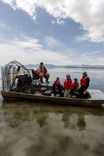 Trent Nelson  |  The Salt Lake Tribune Utah's Water Quality Board took a tour of the Bear River Migratory Bird Refuge Wednesday as part of a pollution study that could have a big impact on the future of the lake.