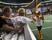 Lennie Mahler  |  The Salt Lake Tribune Blaze fan Chris Burr holds his nephew, Tanner Kehr, out to get a high-five from Torch the tiger after the blaze scored a touchdown against the San Antonio Talons on Saturday, May 26, 2012, at EnergySolutions Arena.