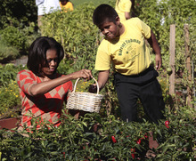 HOLD FOR RELEASE AT 12:01 A.M. TUESDAY, MAY 29, 2012, AND THEREAFTER WITH STORY SLUGGED: MICHELLE OBAMA BOOK - FILE - In this Oct. 5, 2011 file photo, first lady Michelle Obama gets help from fifth grade student Sterling Zapata in filling a basket with peppers in the White House garden in Washington. From the beginning, Obama's kitchen garden has been an overachiever, churning out more peppers, parsley and eggplant than expected, and generating interest that _ yes, really _ crosses oceans. (AP Photo/Pablo Martinez Monsivais, File)