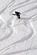 Tribune file photo A skier makes a telemark turn in the powder at Alta. The Utah ski resort is ending its popular