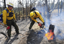 Arizona's Hopi 5 Hotshot Ian Nuvamsa, at left, watches as teammate Peterson Hubbard, cuts a burning stump while battling the Little Bear fire near Ruidoso, N.M., on Monday June 11, 2012. (AP Photo/Albuquerque Journal, Adolphe Pierre-Louis)