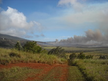In this Nov. 18, 2008 file photo courtesy of the The Lanai Times, a brush fire burns on the island of Lanai, Hawaii. Oracle Corp. CEO Larry Ellison has reached a deal to buy 98 percent of the island of Lanai from its current owner, Hawaii Gov. Neil Abercrombie said Wednesday, June 20, 2012. (AP Photo/The Lanai Times, Sharon Owens, File)