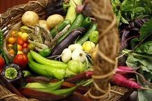 Trent Nelson  |  The Salt Lake Tribune Summer produce