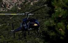 Djamila Grossman  |  The Salt Lake Tribune  A Utah Highway Patrol helicopter flies over the mountains as law enforcement officials remove marijuana plants grown illegally in the Fishlake National Forest near Beaver on Thursday, Aug. 18, 2011. Several agencies were involved in the operation that yielded several thousand plants. No growers were arrested.