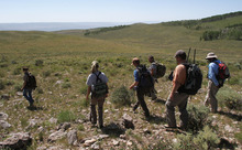 Francisco Kjolseth  |  The Salt Lake Tribune A small team of wildlife biologists search the Monroe Mountains for a doe who has recently given birth to a pair of fawns.
