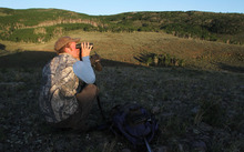 Francisco Kjolseth  |  The Salt Lake Tribune Eric Freeman, a field research coordinator and graduate student at BYU, starts his day at first light in the Monroe Mountains taking up position in a place where he can track several does he's spotted before in hopes of also putting radio collars on their recently born fawns.