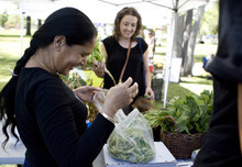 Kim Raff | The Salt Lake Tribune Dil Dhakak, left, weighs a bag of peas for Melissa Helquist at the New Roots booth at The People's Market, which began its seventh season July 8 with local produce, crafts and entertainment at the International Peace Gardens in Salt Lake City. The market will be open every Saturday from 10 a.m.-3 p.m.