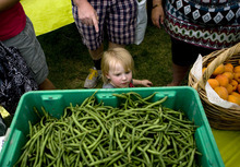 Kim Raff | The Salt Lake Tribune Olive Stieber looks at string beans for sale at The People's Market, which began its seventh season July 8 with local produce, crafts and entertainment at the International Peace Gardens in Salt Lake City. The market will be open every Saturday from 10 a.m.-3 p.m.