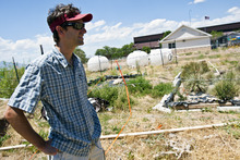 Chris Detrick  |  The Salt Lake Tribune Dasch Houdeshel shows off bioretention gardens at the University of Utah Tuesday July 17, 2012. Dasch is a graduate student in civil and environmental engineering, leading research projects into bio-retention design.