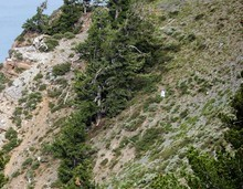 A man dressed as a mountain goat on Ben Lomond Peak near Ogden. Courtesy photo.