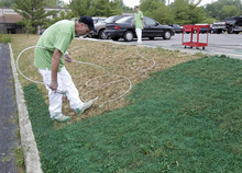 Ronnie Sharp, left, and Brandy Birdwell of Imperial Painting, spray turf paint on a drought ravished lawn outside a auto repair shop in Indianapolis, Friday, July 20, 2012. Without cutting the color will last four to six months.  (AP Photo/Michael Conroy)