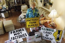 In this July, 28, 2012 photo, Karen Hudson, co-founder of Illinois Citizens for Clean Air and Water, poses with signs in Elmwood, Ill., opposing huge corporate-funded farms that are springing up across country.  Hudson says many rural communities have been divided over this issue. She says as these livestock farms have grown to house thousands and even tens of thousands of animals - there are very real concerns about air and water pollution. She is calling for compromise and more regulation.Four years after the U.S. Government Accountability Office raised concerns and 40 years after the Clean Water Act gave the EPA the authority to protect the nation's waterways, the agency still doesn't know the location of many livestock farms. (AP Photo/M. Spencer Green)