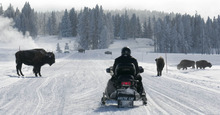 Tribune file photo The National Park Service is accepting public comments about Yellowstone's winter plan until Aug. 20, online at parkplanning.nps.gov/yell or by mail at: Winter Use Planning, P.O. Box 168, Yellowstone National Park, WY 82190.