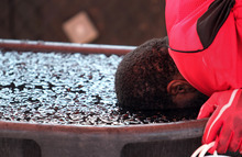 Lennie Mahler  |  The Salt Lake Tribune Utah running back Kelvin York dunks his head in ice bath to cool off after football practice Saturday, Aug. 11, 2012.